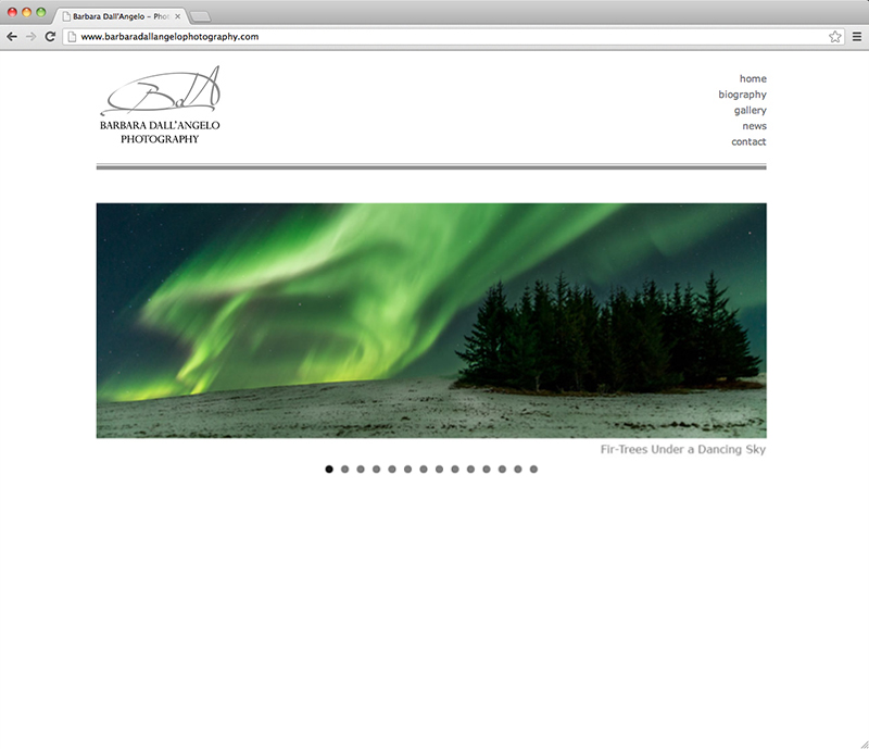 Barbara Dall'Angelo website